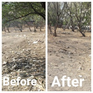 anandvan after cleaning drive